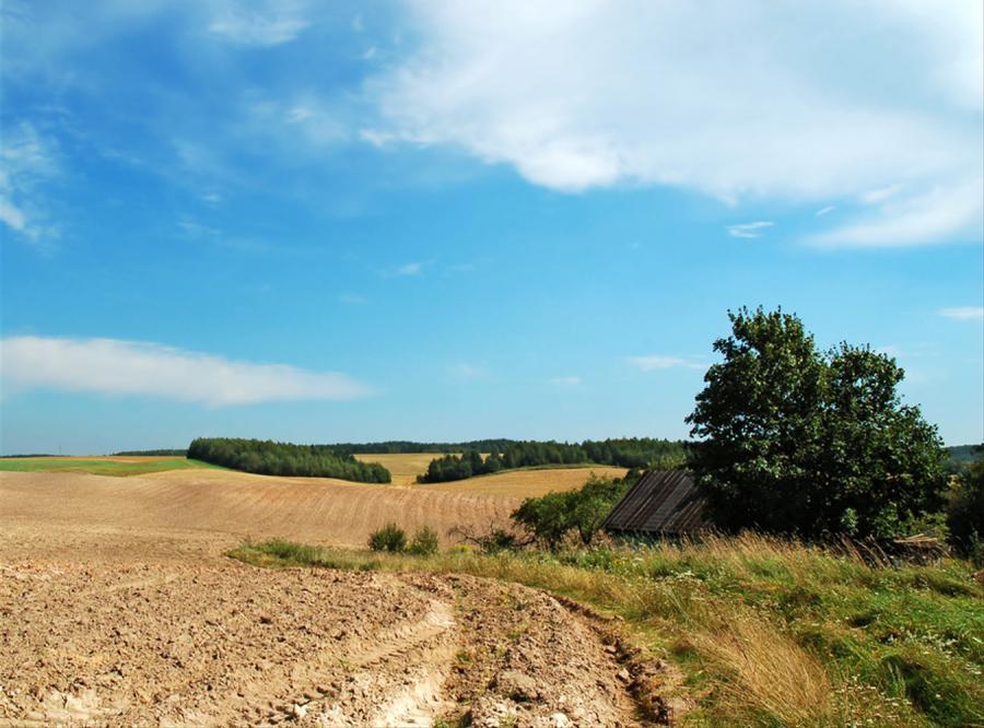 Cudzoziemcy wykupują polską ziemię