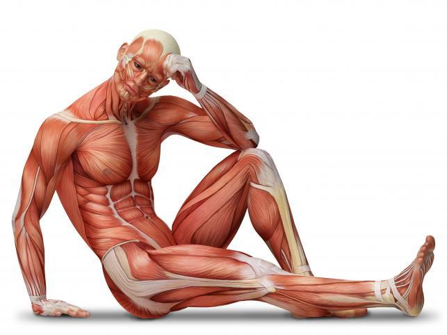 Zeskanowanie ciała człowieka w trójwymiarze jest zdecydowanie lepsze od badania rentgenowskiego
