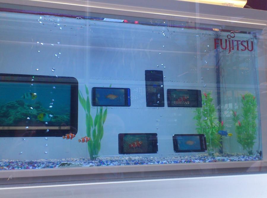 Wododporne smartfony Fujitsu