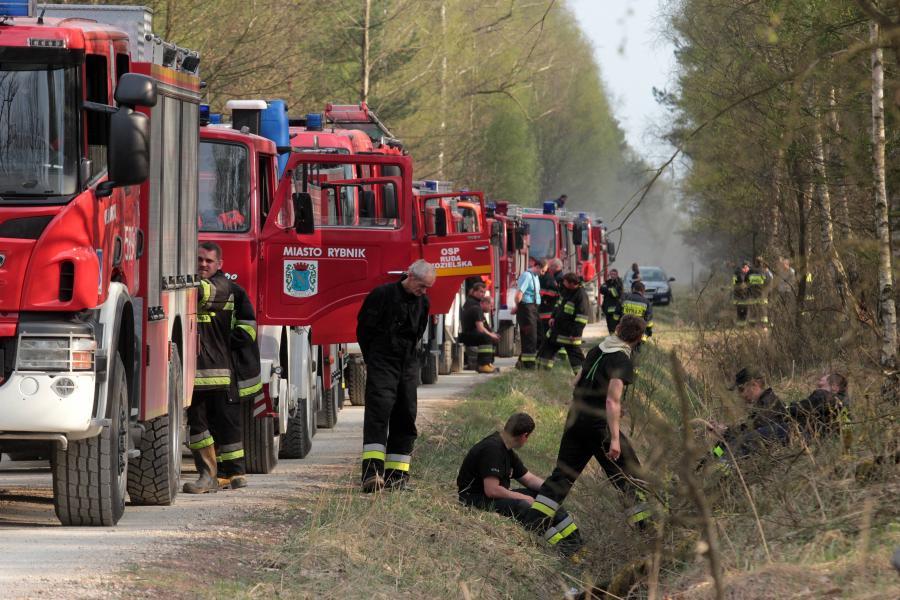 Strażacy walczą z pożarem lasów