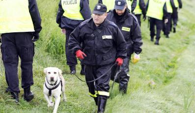 Poszukiwania Iwony Wieczorek. Akcja policji w Trójmieście