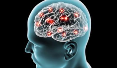 DDT uszkadza mózg i wywołuje alzheimera?