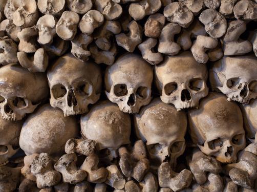 """Niezwykła kaplica czaszek, jedyna taka w Polsce. 30 tysięcy ofiar. """"Żywym ku przestrodze..."""" [ZDJĘCIA]"""