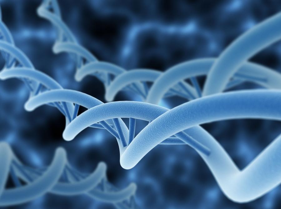 3. Głównym czynnikiem ryzyka są geny