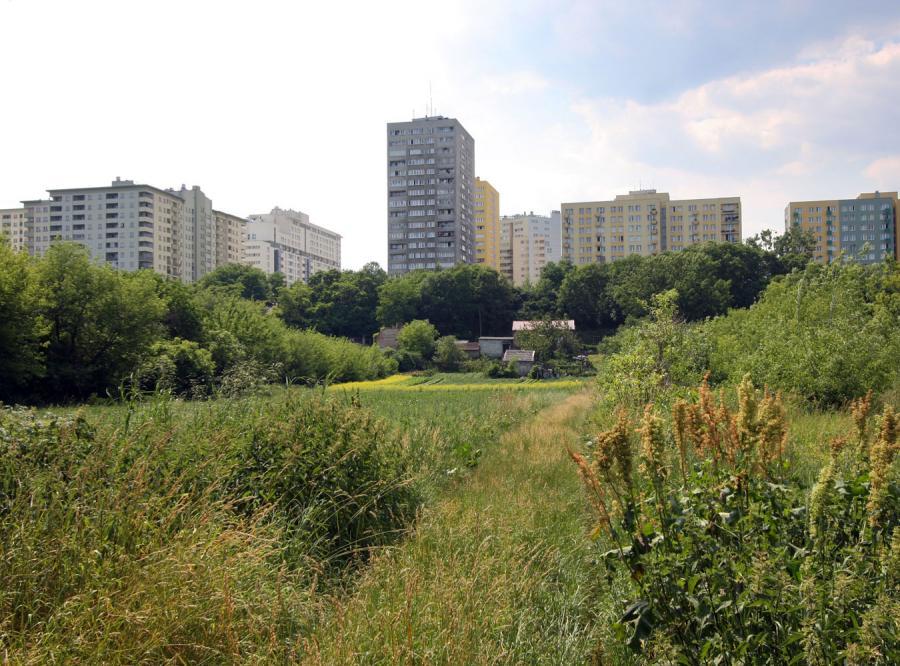 Nie będzie szybkiego odrolnienia gruntów w miastach