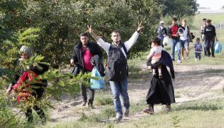Imigranci na granicy węgiersko-serbskiej
