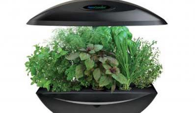 Uprawiaj zioła w kosmicznym stylu