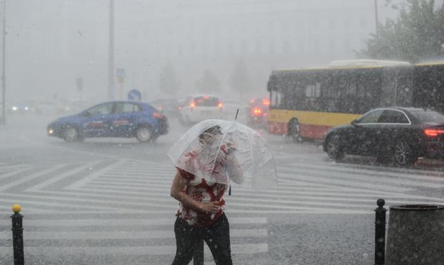 4 ofiary groźnych nawałnic nad Polską. Tysiące połamanych drzew, zablokowane drogi... ZDJĘCIA