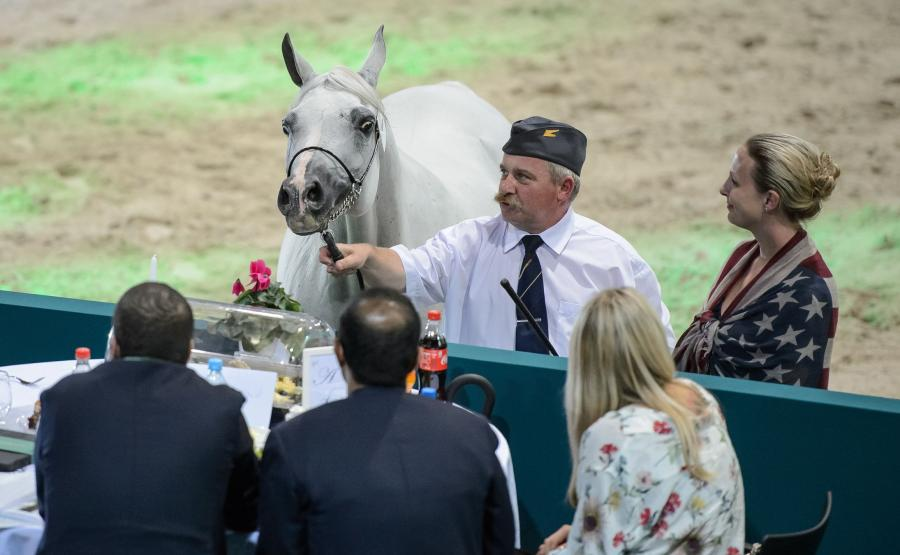 Aukcja koni w Janowie Podlaskim